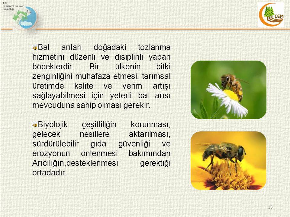 Bal arıları doğadaki tozlanma hizmetini düzenli ve disiplinli yapan böceklerdir. Bir ülkenin bitki zenginliğini muhafaza etmesi, tarımsal üretimde kalite ve verim artışı sağlayabilmesi için yeterli bal arısı mevcuduna sahip olması gerekir.