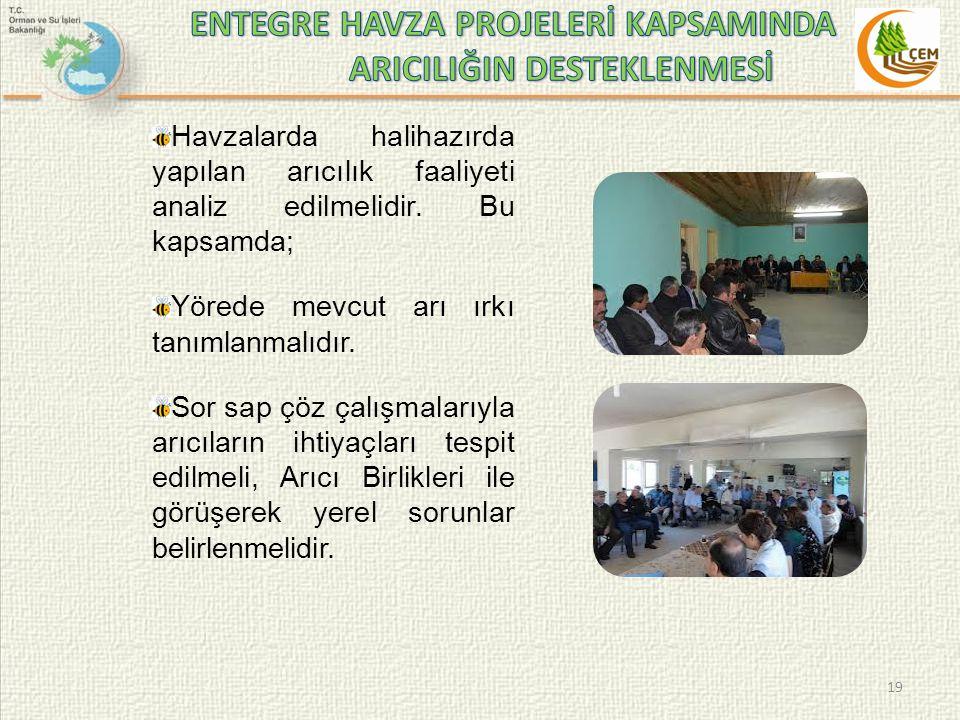 ENTEGRE HAVZA PROJELERİ KAPSAMINDA ARICILIĞIN DESTEKLENMESİ