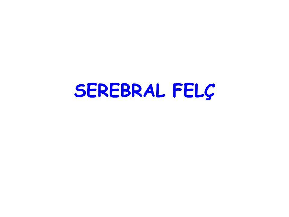 SEREBRAL FELÇ