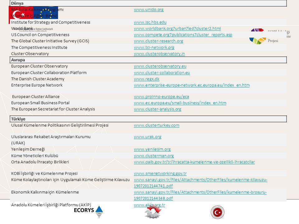 Dünya BM Sınai Kalkınma Programı. (Küme ve İş Ağları Birimi) www.unido.org. Institute for Strategy and Competitiveness.