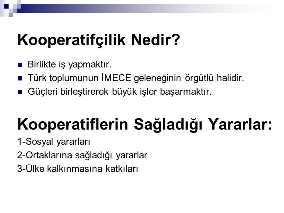 Kooperatifçilik Nedir