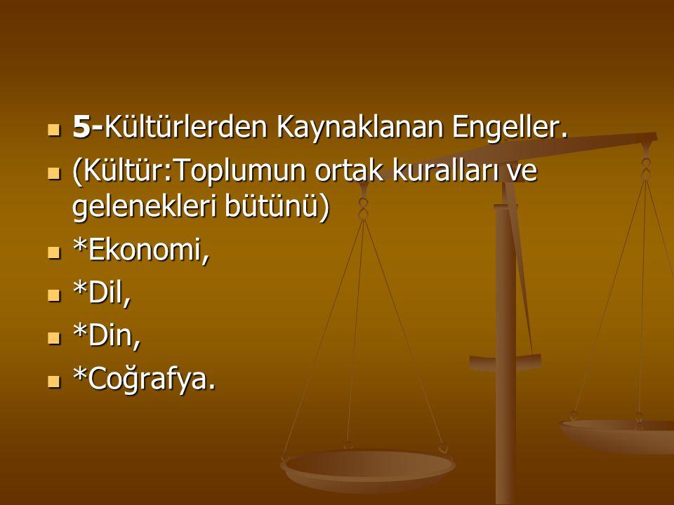 5-Kültürlerden Kaynaklanan Engeller.
