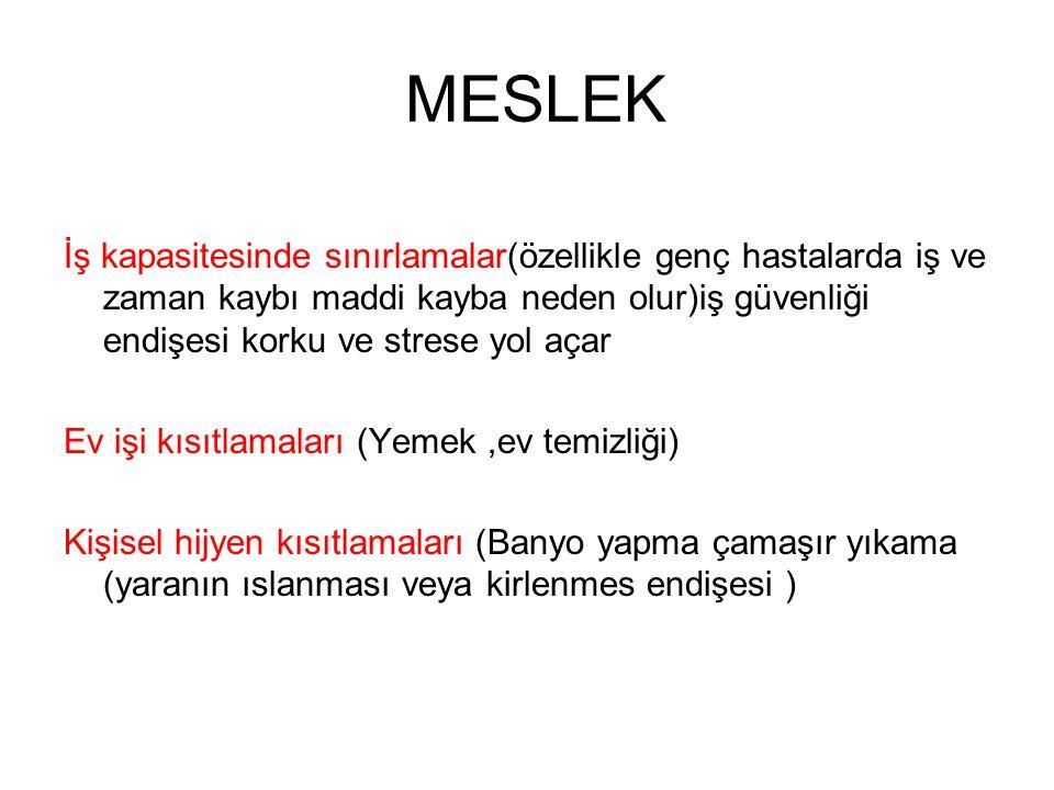 MESLEK