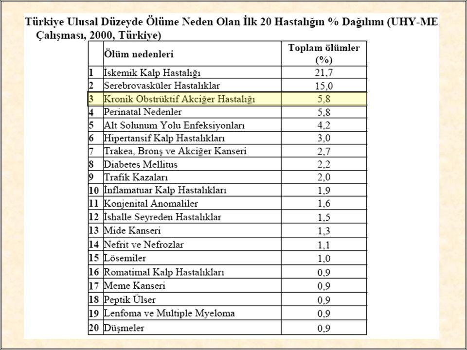 Hıfzıssıhha mektebinin Başkent üniversitesiyle birlikte yürüttüğü ulusal hastalık yükü çalışmasına göre KOAH Türkiye'de şimdiden ölüme neden olan ilk 3 hastalık arasındadır.
