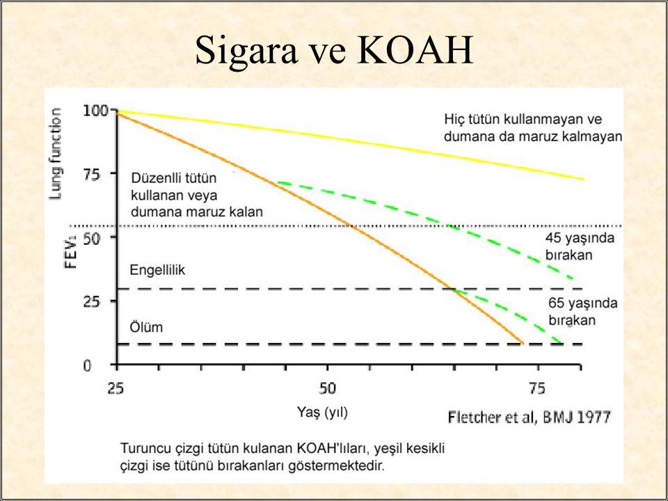 Sigara ve KOAH