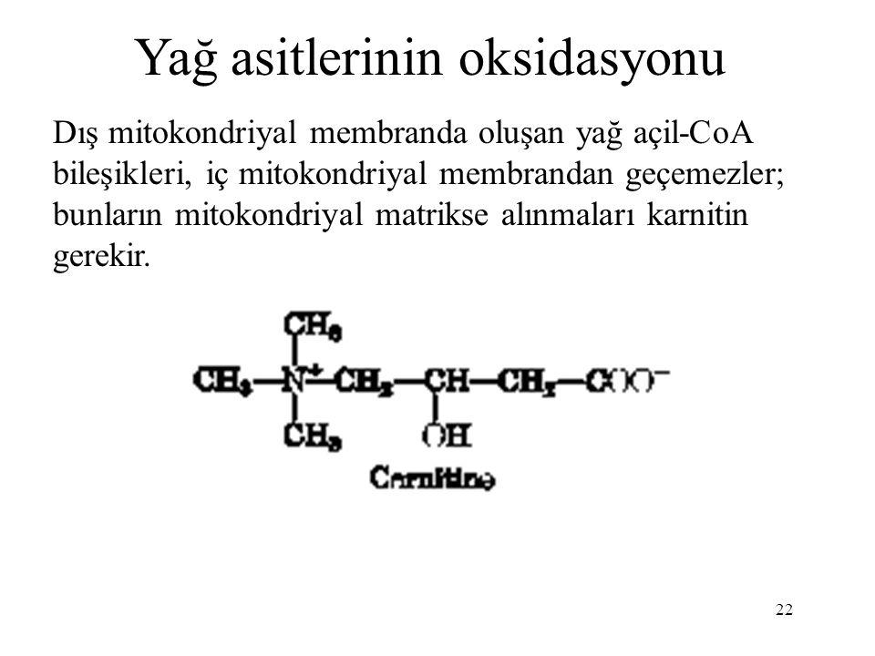 Yağ asitlerinin oksidasyonu