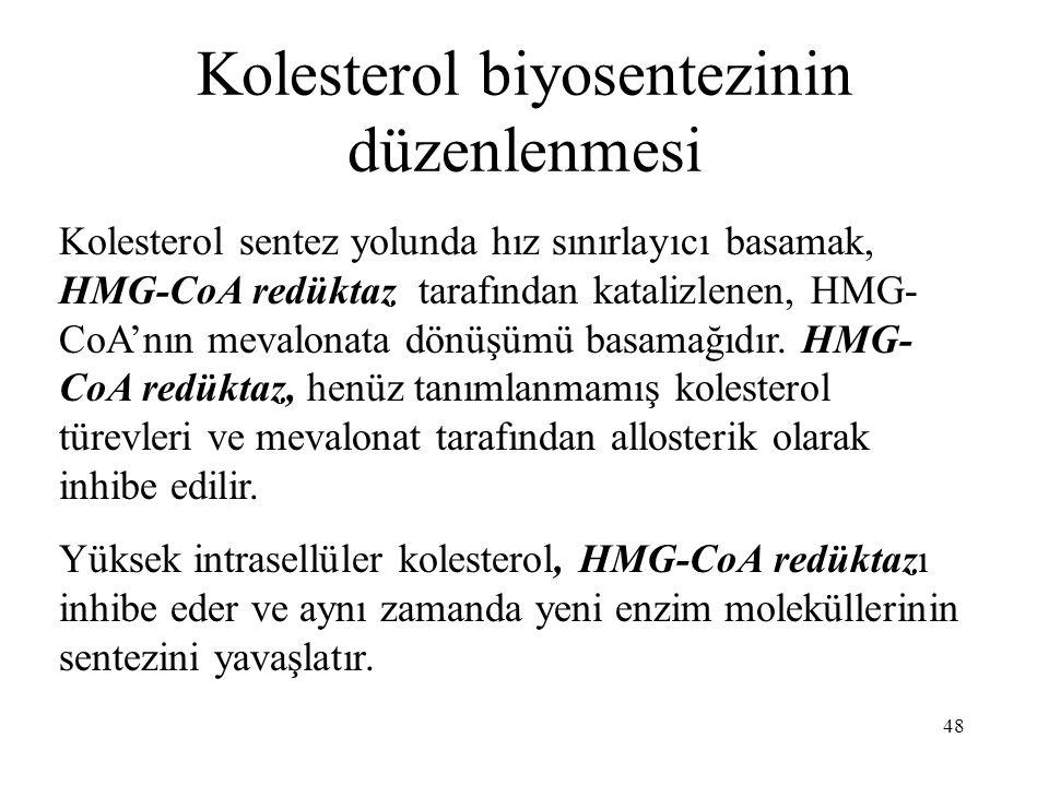 Kolesterol biyosentezinin düzenlenmesi