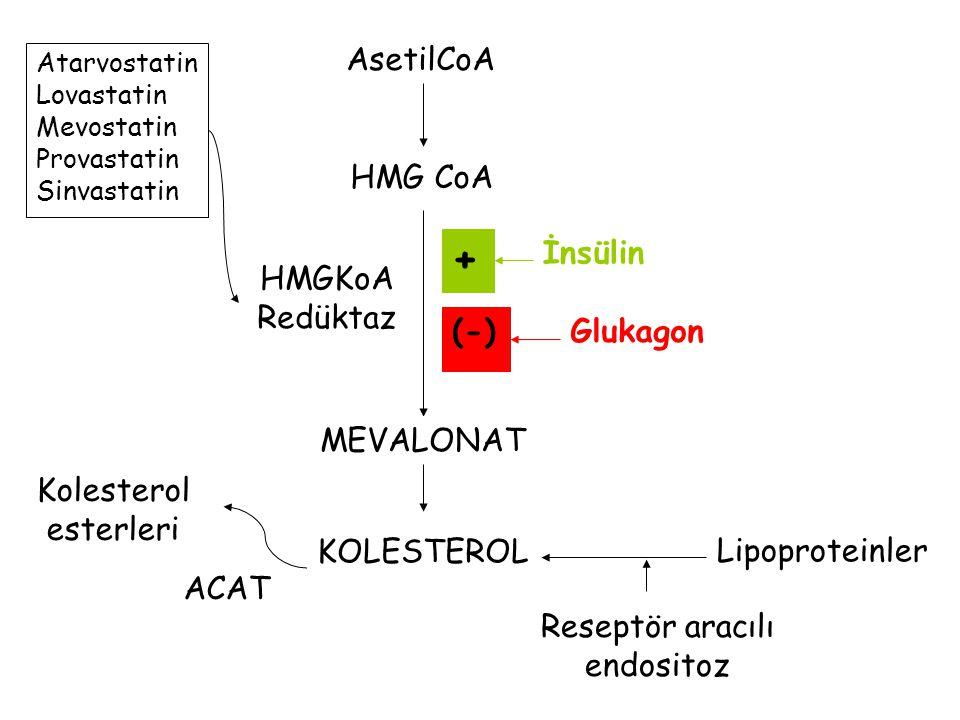 Reseptör aracılı endositoz