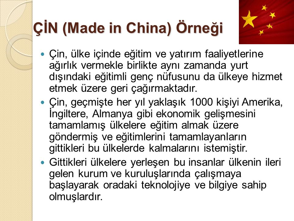 ÇİN (Made in China) Örneği