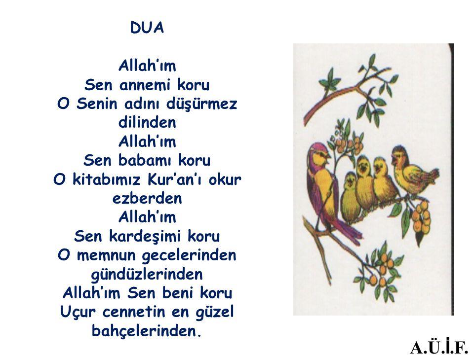 DUA Allah'ım Sen annemi koru O Senin adını düşürmez dilinden Allah'ım Sen babamı koru O kitabımız Kur'an'ı okur ezberden Allah'ım Sen kardeşimi koru O memnun gecelerinden gündüzlerinden Allah'ım Sen beni koru Uçur cennetin en güzel bahçelerinden.