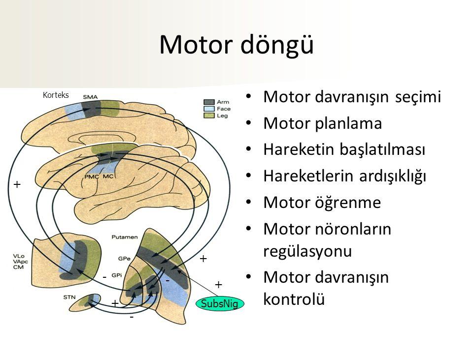 Motor döngü Motor davranışın seçimi Motor planlama