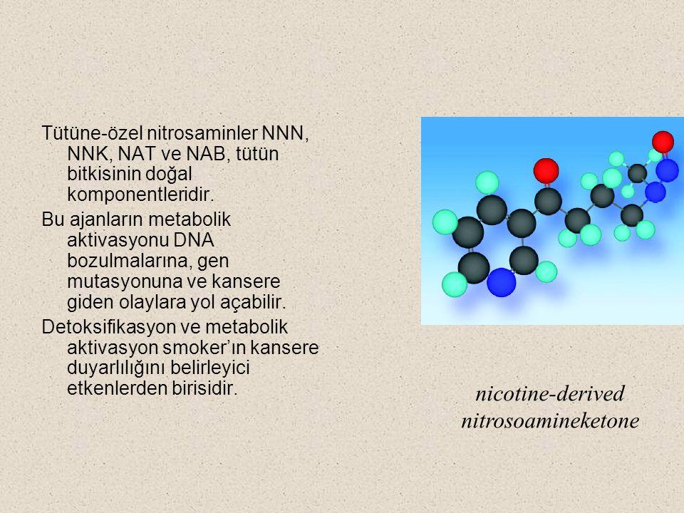 nicotine-derived nitrosoamineketone