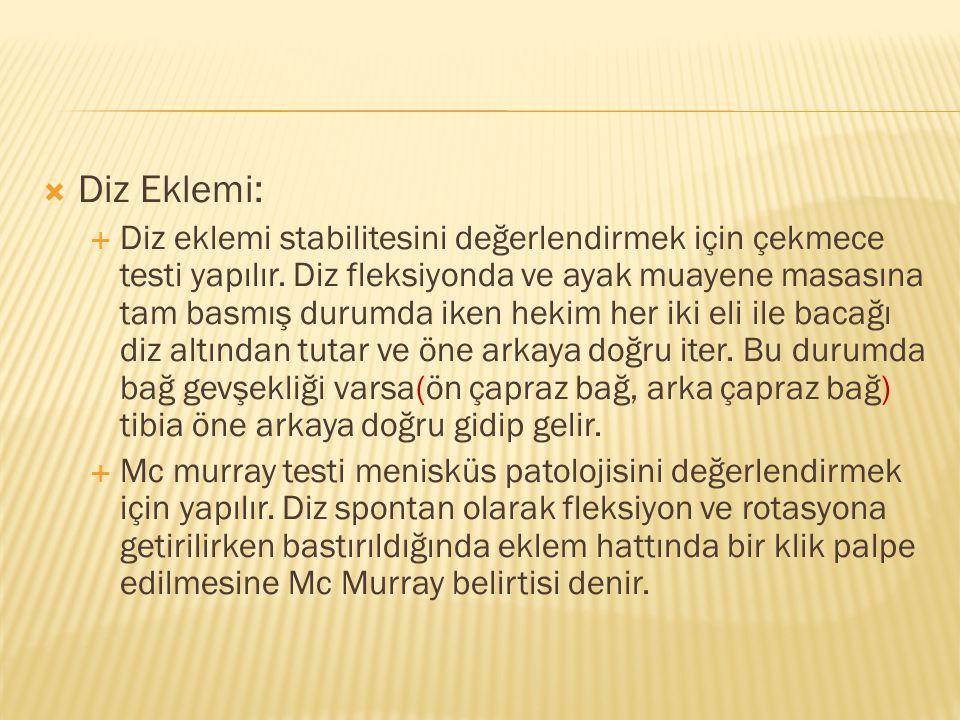 Diz Eklemi: