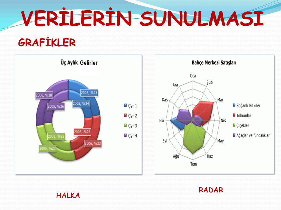 VERİLERİN SUNULMASI GRAFİKLER RADAR HALKA