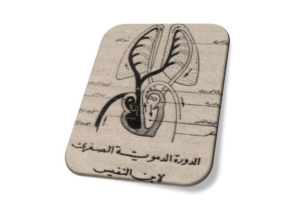 Şerhu Tasrih-il-Kanun (İbni Sina'nın Kanununun şerhinde)
