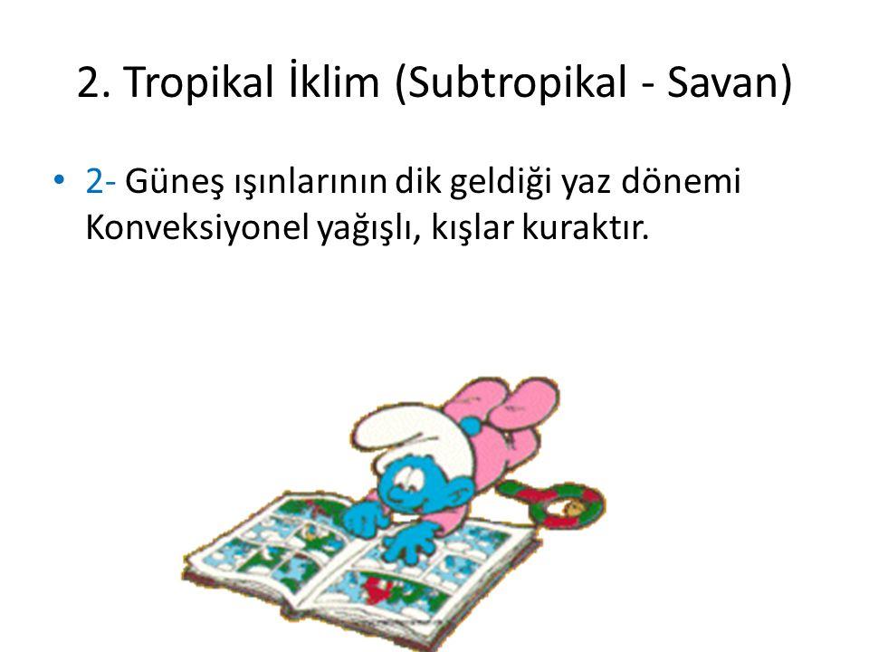 2. Tropikal İklim (Subtropikal - Savan)