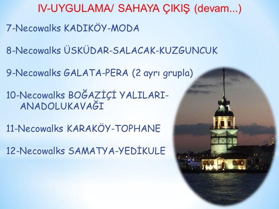 IV-UYGULAMA/ SAHAYA ÇIKIŞ (devam...)