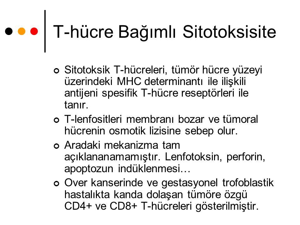 T-hücre Bağımlı Sitotoksisite