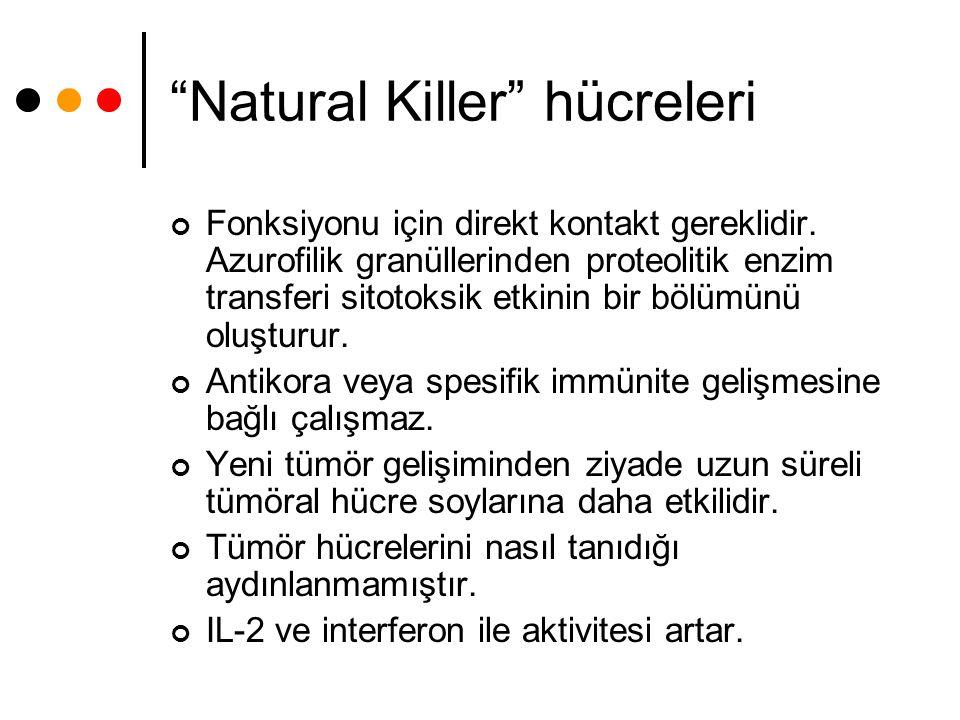 Natural Killer hücreleri