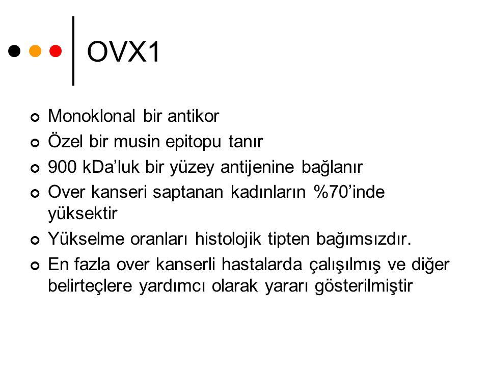 OVX1 Monoklonal bir antikor Özel bir musin epitopu tanır