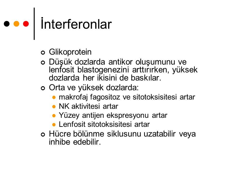İnterferonlar Glikoprotein