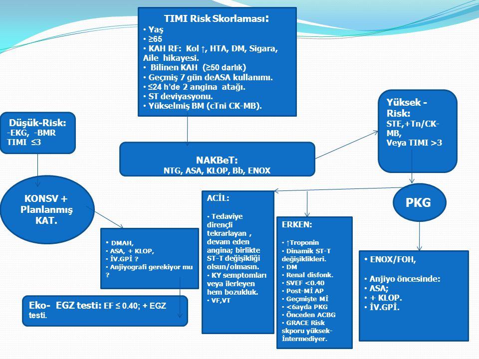 PKG TIMI Risk Skorlaması: Yüksek - Risk: Düşük-Risk: NAKBeT: