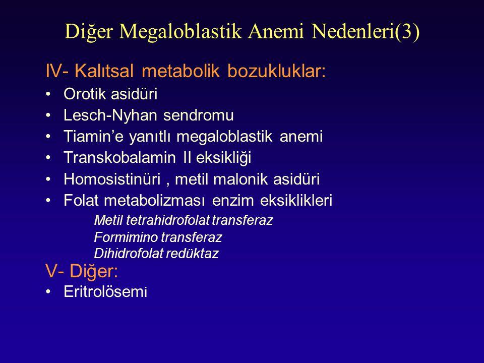 Diğer Megaloblastik Anemi Nedenleri(3)