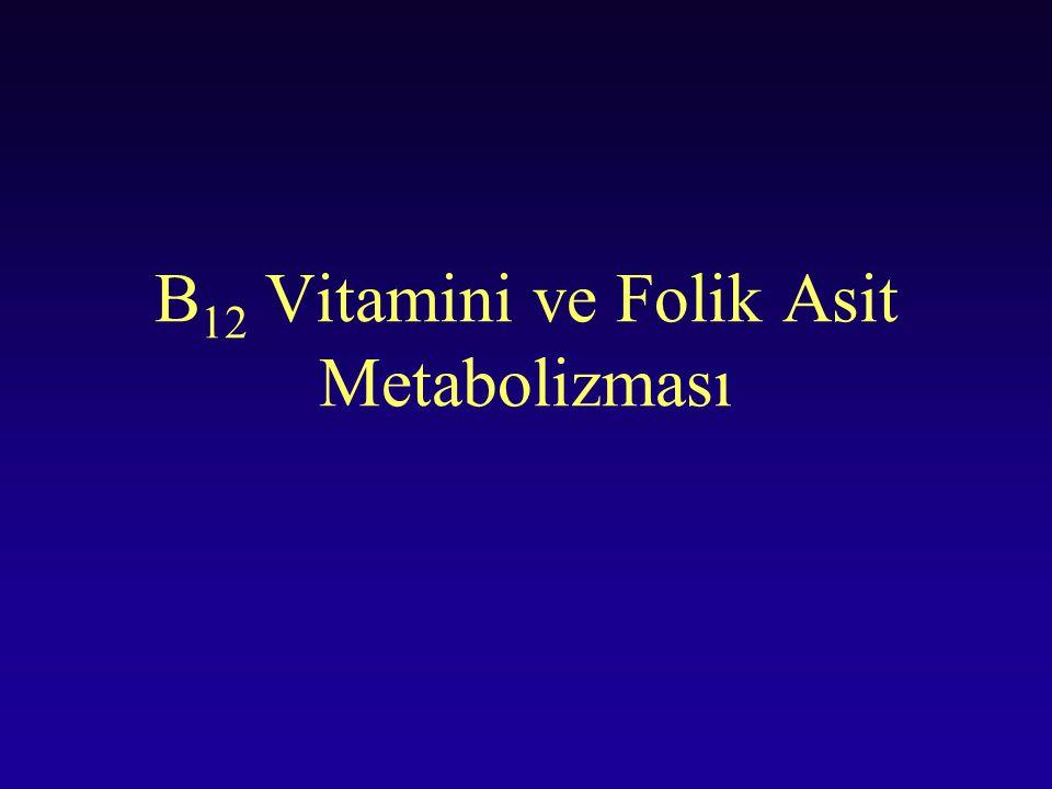 B12 Vitamini ve Folik Asit Metabolizması