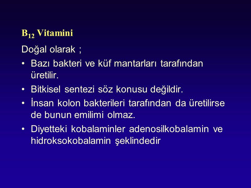 B12 Vitamini Doğal olarak ; Bazı bakteri ve küf mantarları tarafından üretilir. Bitkisel sentezi söz konusu değildir.