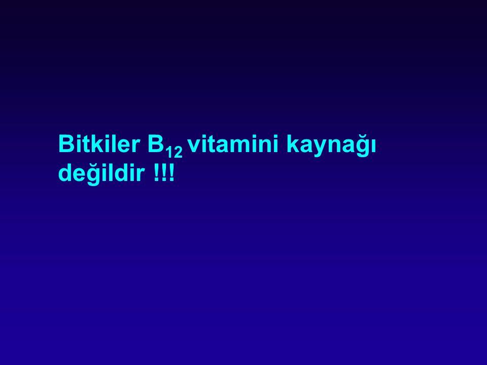 Bitkiler B12 vitamini kaynağı değildir !!!