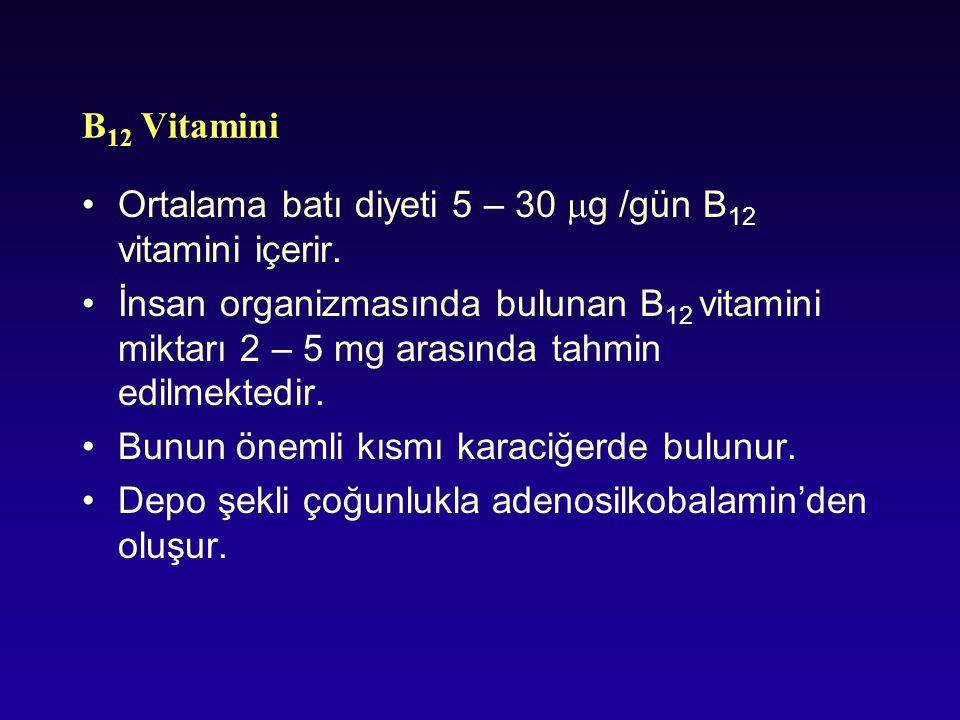 B12 Vitamini Ortalama batı diyeti 5 – 30 g /gün B12 vitamini içerir.