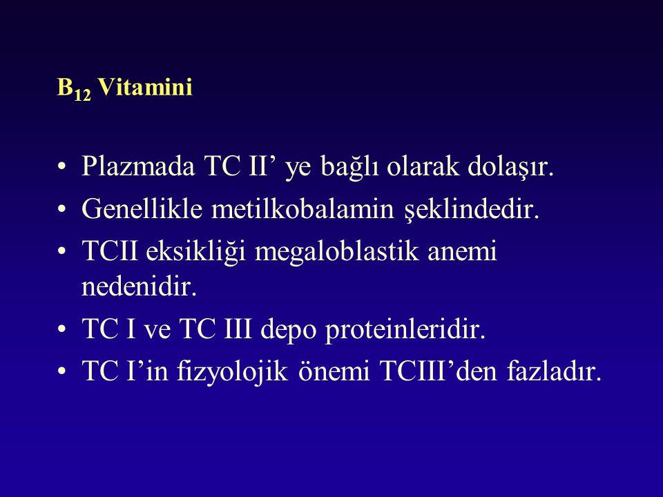 Plazmada TC II' ye bağlı olarak dolaşır.