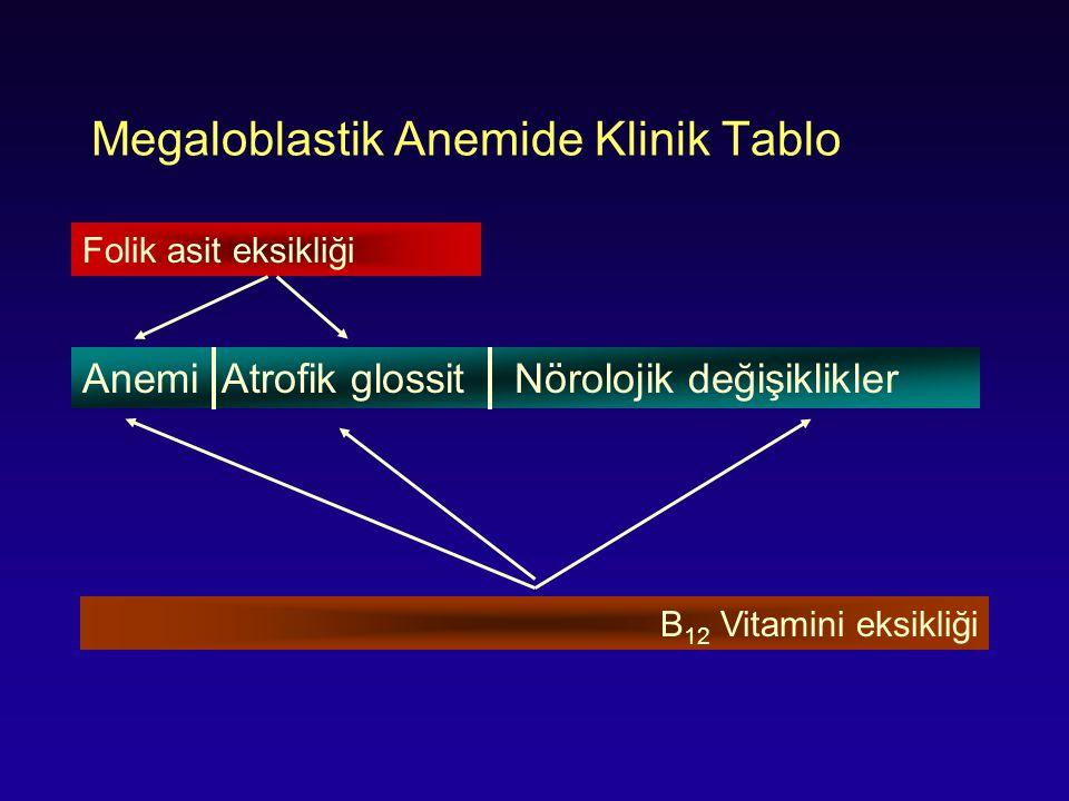 Megaloblastik Anemide Klinik Tablo