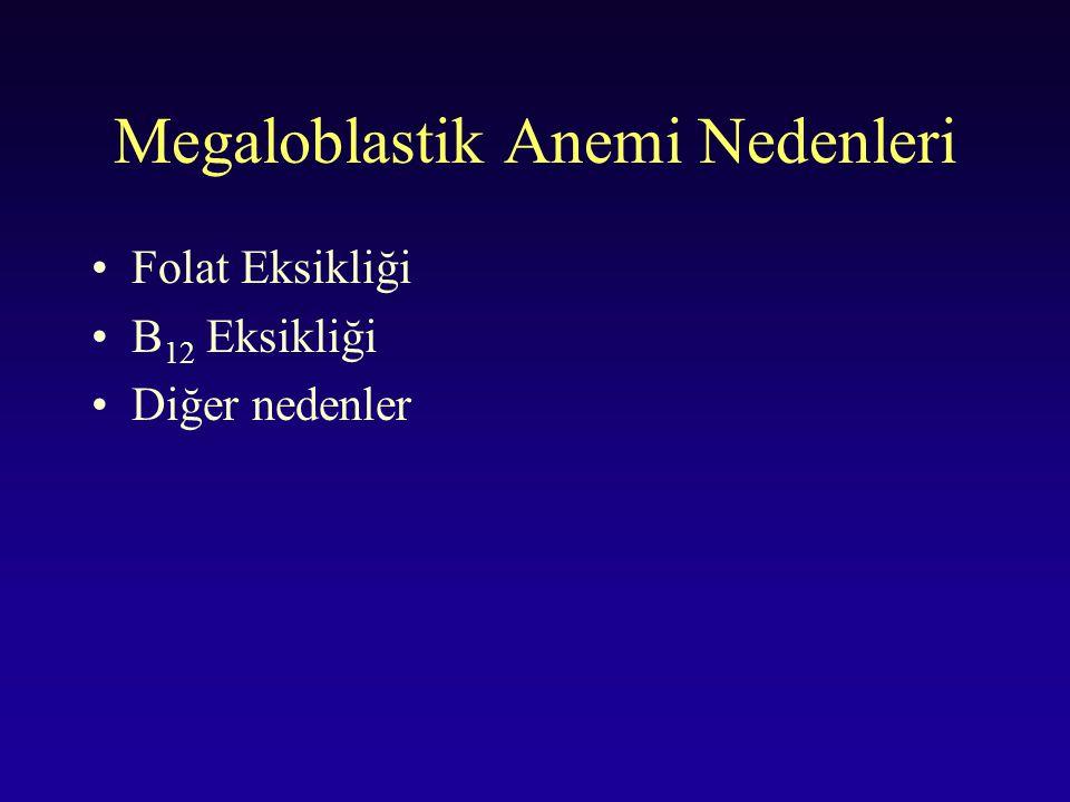 Megaloblastik Anemi Nedenleri