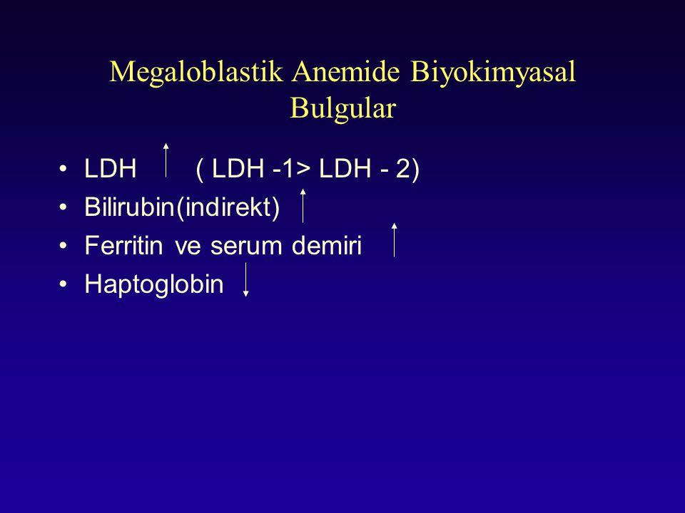 Megaloblastik Anemide Biyokimyasal Bulgular