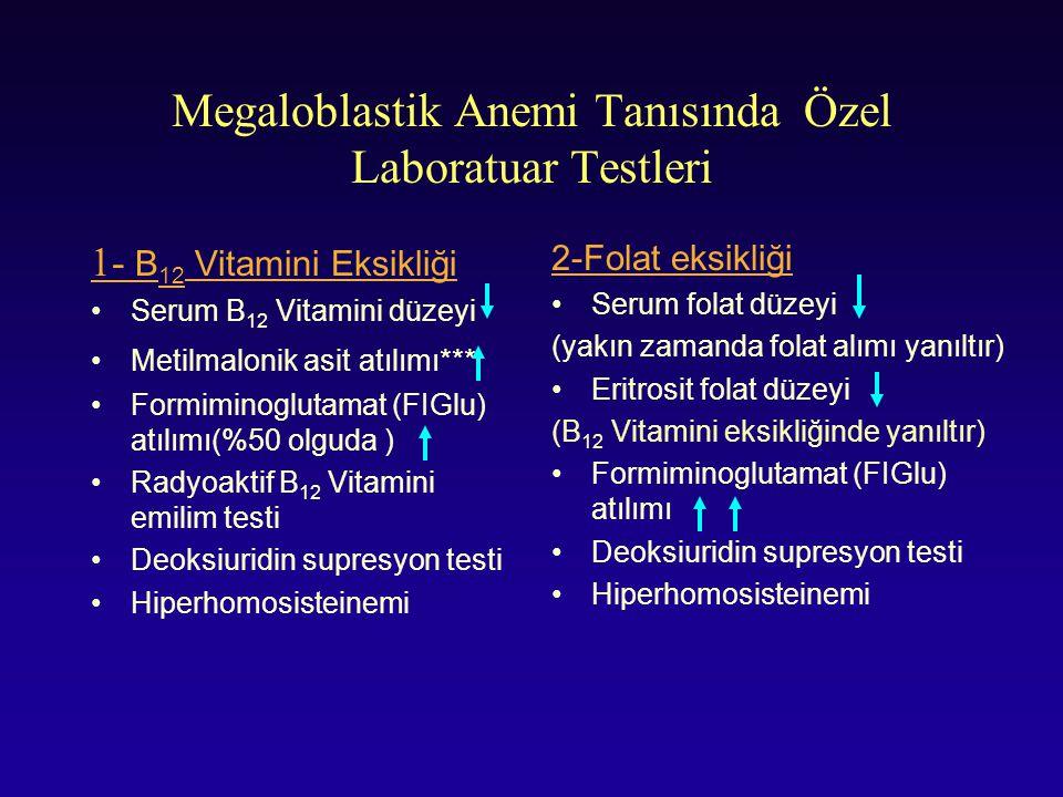 Megaloblastik Anemi Tanısında Özel Laboratuar Testleri
