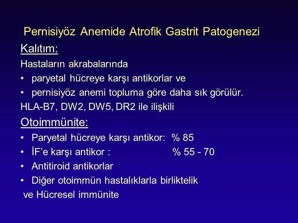 Pernisiyöz Anemide Atrofik Gastrit Patogenezi