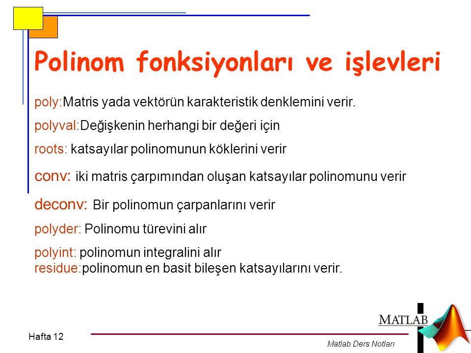 Polinom fonksiyonları ve işlevleri