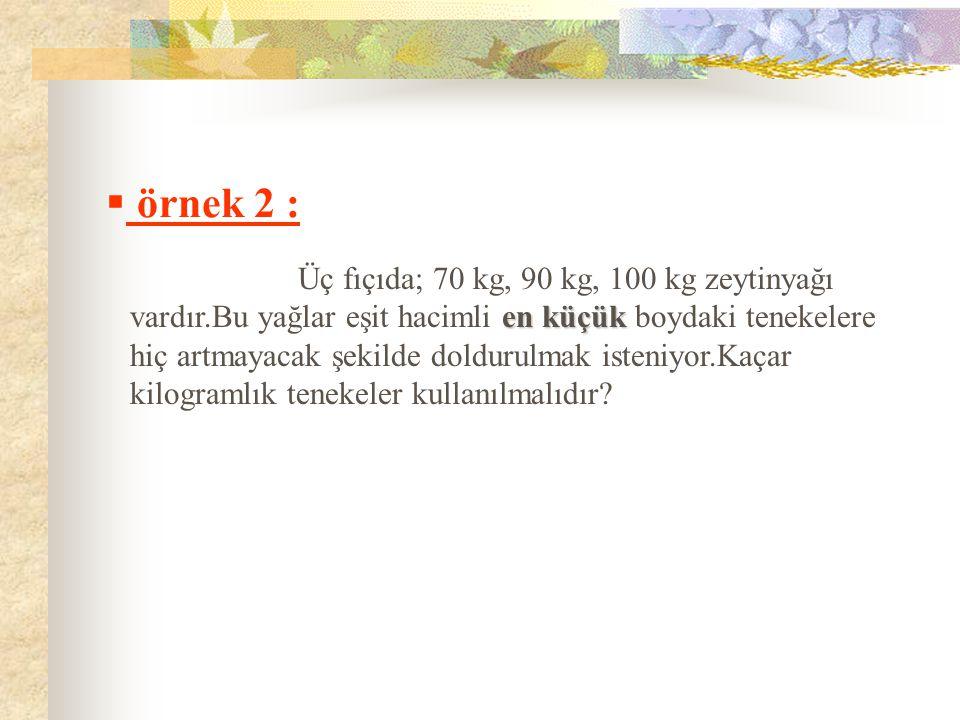 örnek 2 :