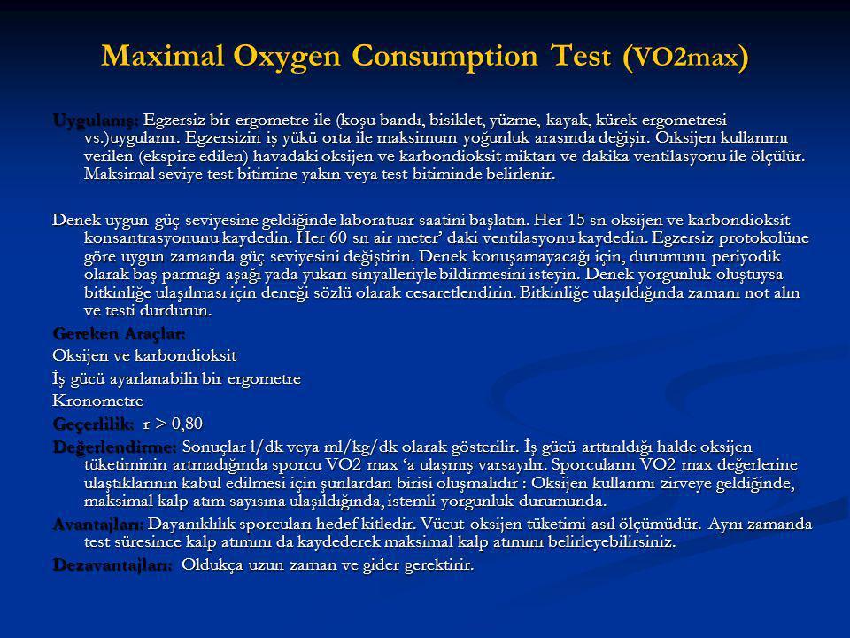 Maximal Oxygen Consumption Test (VO2max)