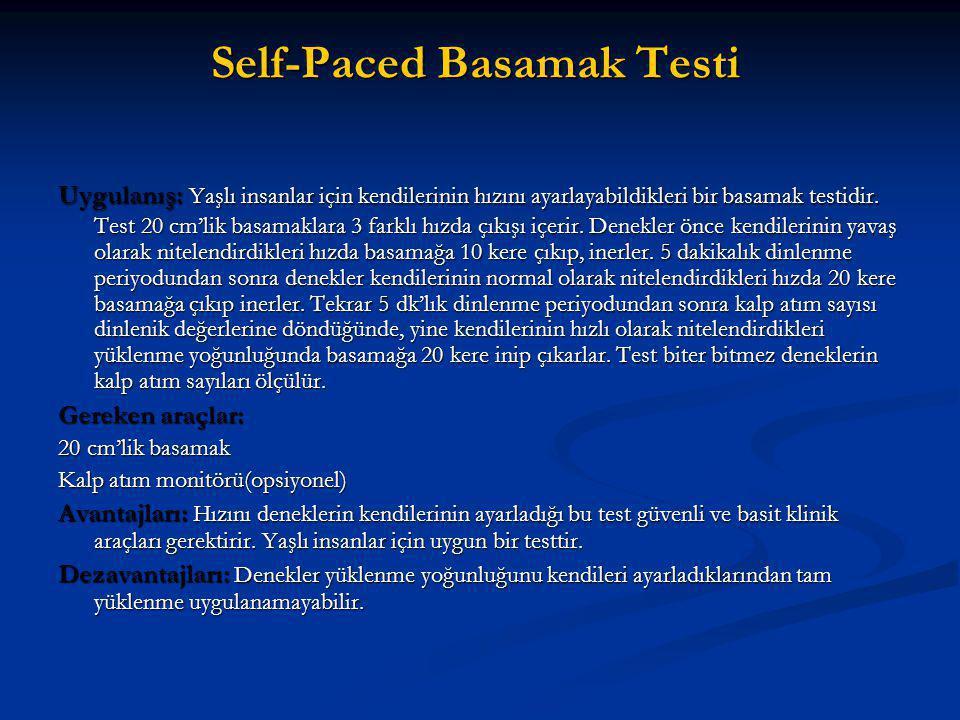 Self-Paced Basamak Testi