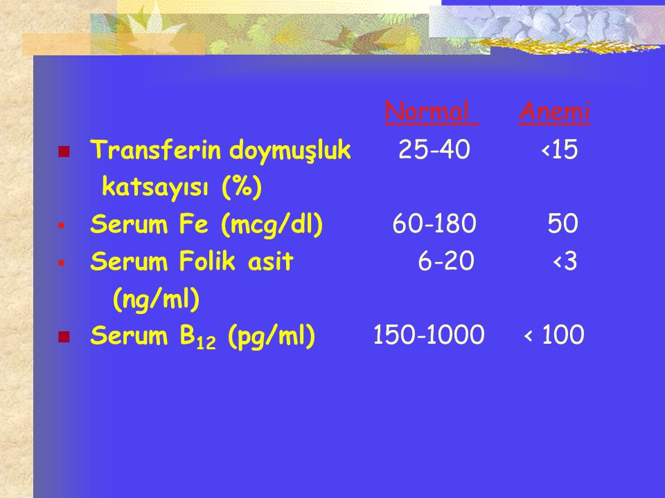 Normal Anemi Transferin doymuşluk 25-40 <15 katsayısı (%)