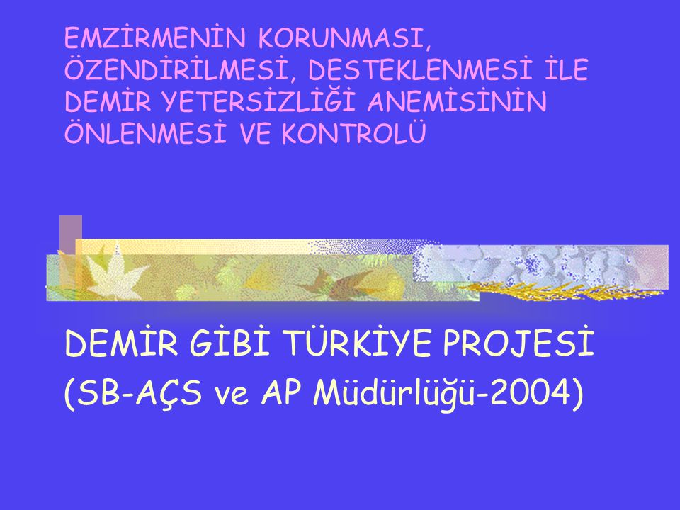 DEMİR GİBİ TÜRKİYE PROJESİ (SB-AÇS ve AP Müdürlüğü-2004)