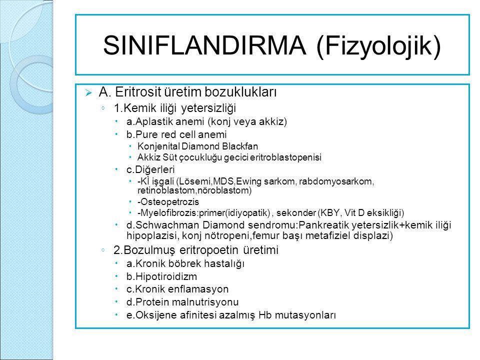 SINIFLANDIRMA (Fizyolojik)