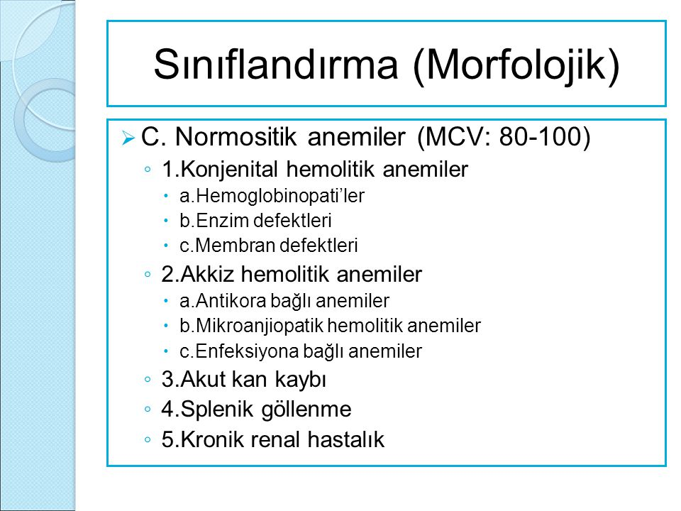 Sınıflandırma (Morfolojik)