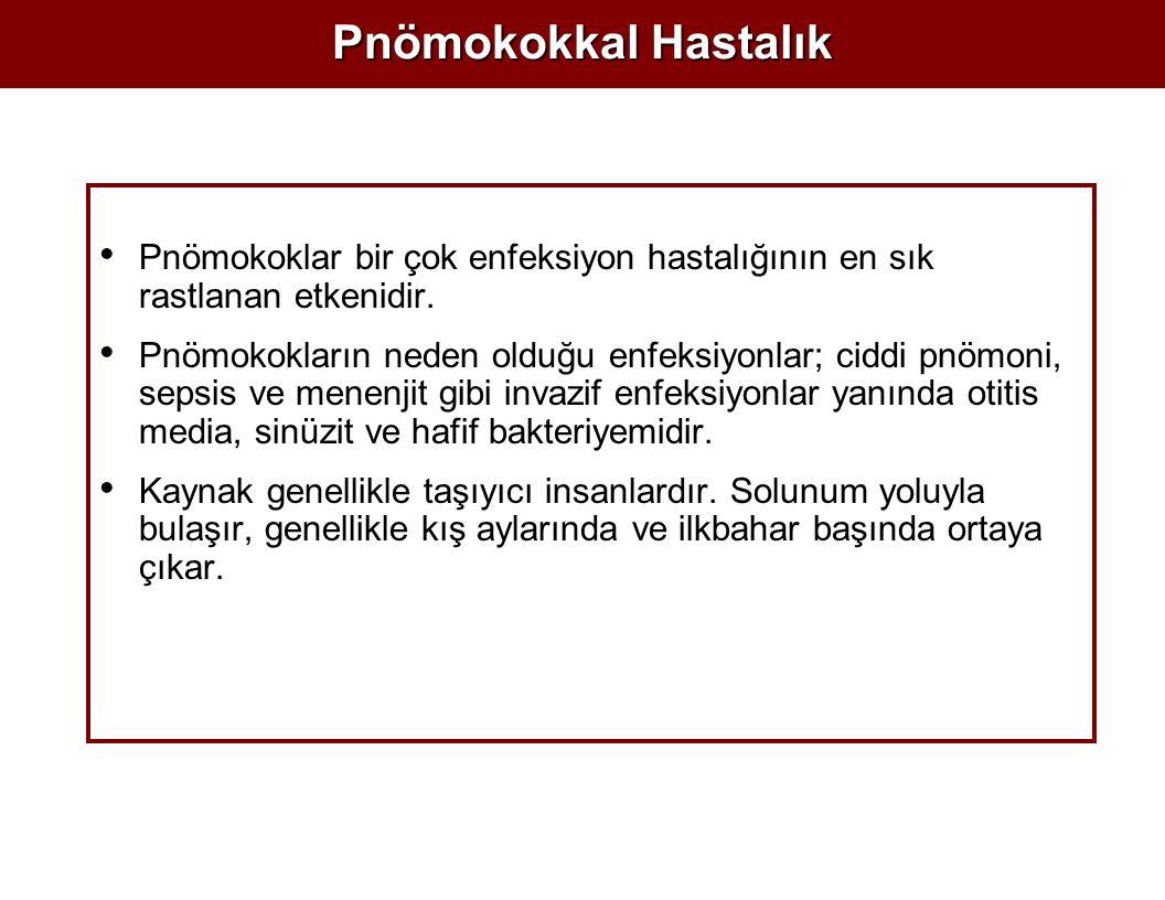 Pnömokokkal Hastalık Pnömokoklar bir çok enfeksiyon hastalığının en sık rastlanan etkenidir.