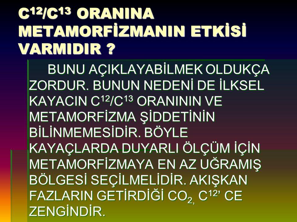 C12/C13 ORANINA METAMORFİZMANIN ETKİSİ VARMIDIR