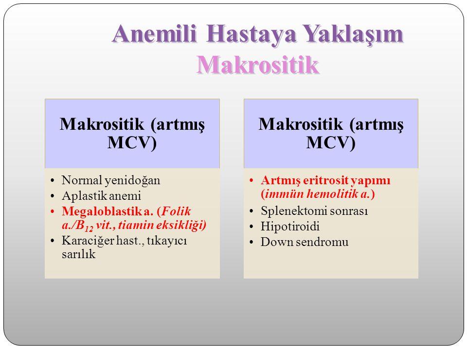 Anemili Hastaya Yaklaşım Makrositik