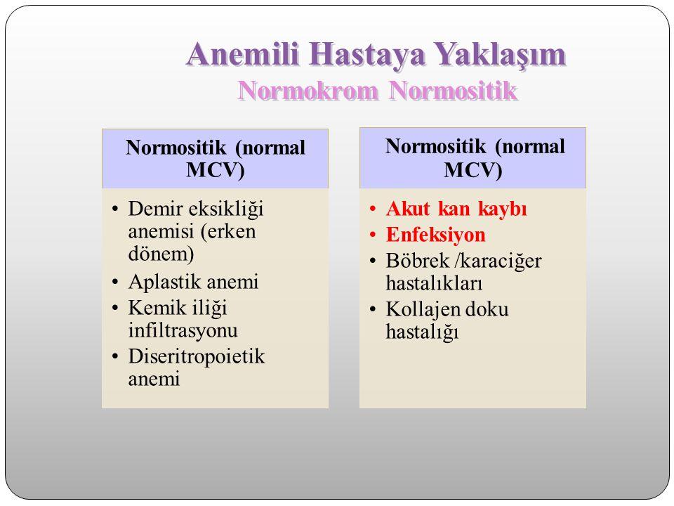 Anemili Hastaya Yaklaşım Normokrom Normositik