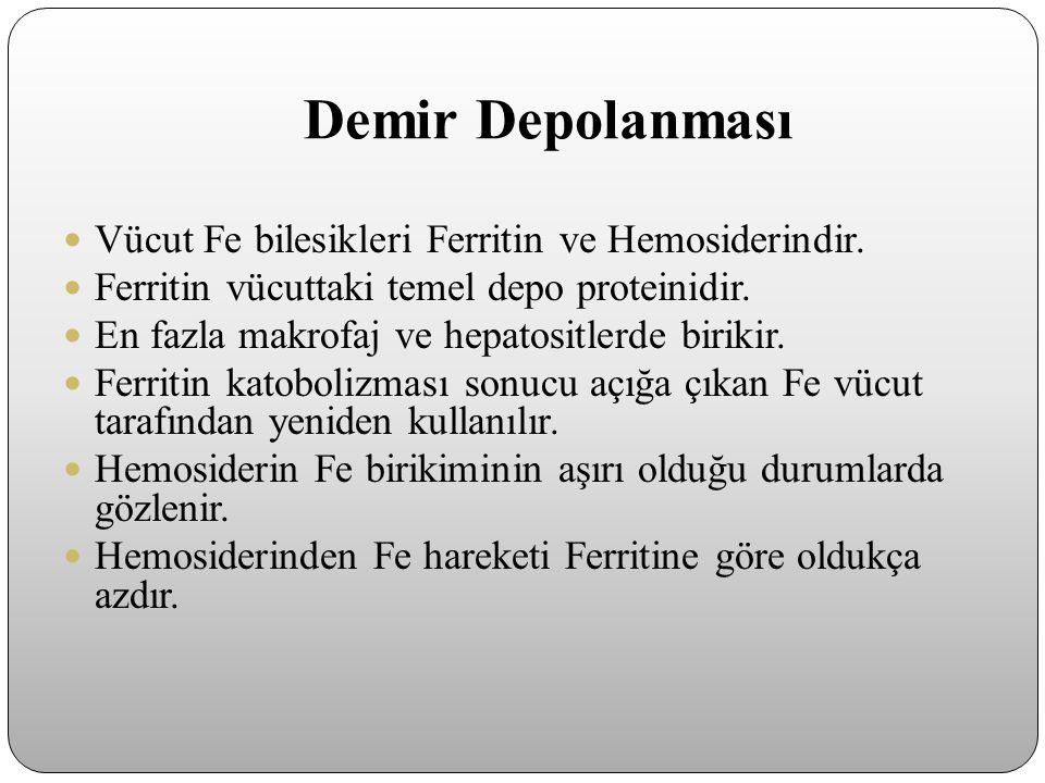Demir Depolanması Vücut Fe bilesikleri Ferritin ve Hemosiderindir.